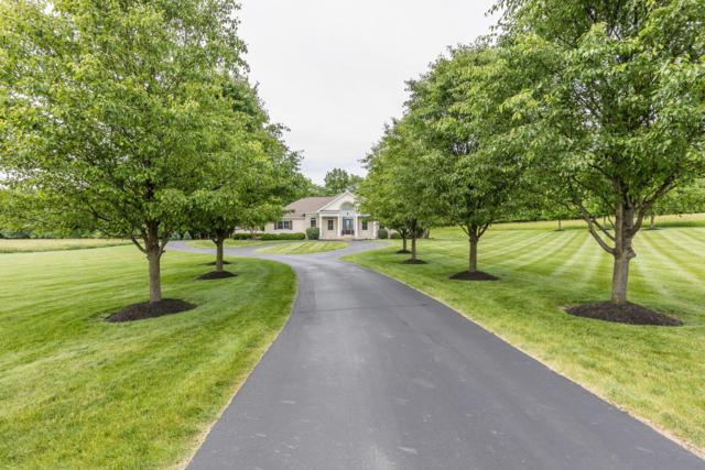 525 Trillium Drive, Galloway, OH 43119 (MLS #219020504) :: Signature Real Estate