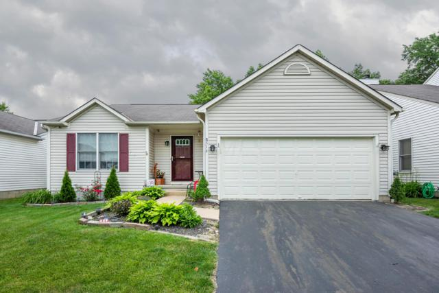 8516 Amarillo Drive, Blacklick, OH 43004 (MLS #219020632) :: Signature Real Estate