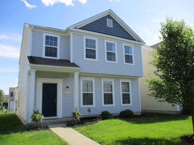 7823 Freesia Street #295, Blacklick, OH 43004 (MLS #219020645) :: Brenner Property Group | Keller Williams Capital Partners