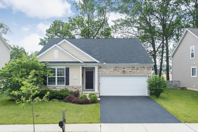 870 Canal Street, Delaware, OH 43015 (MLS #219020698) :: The Clark Group @ ERA Real Solutions Realty