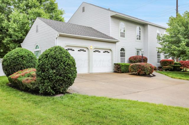 239 Sterling Glen Drive, Westerville, OH 43081 (MLS #219020750) :: Signature Real Estate