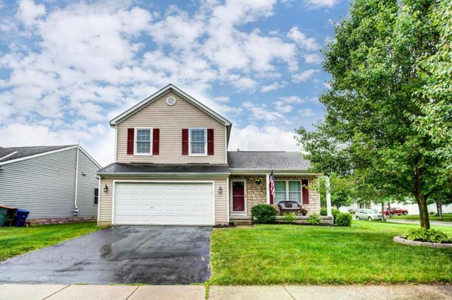 5953 Wellbrid Drive, Galloway, OH 43119 (MLS #219020806) :: Signature Real Estate