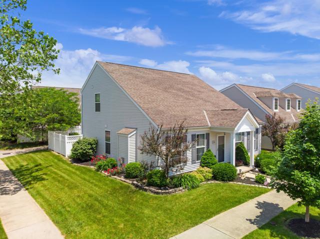 7170 Winterbek Avenue, New Albany, OH 43054 (MLS #219020883) :: Signature Real Estate