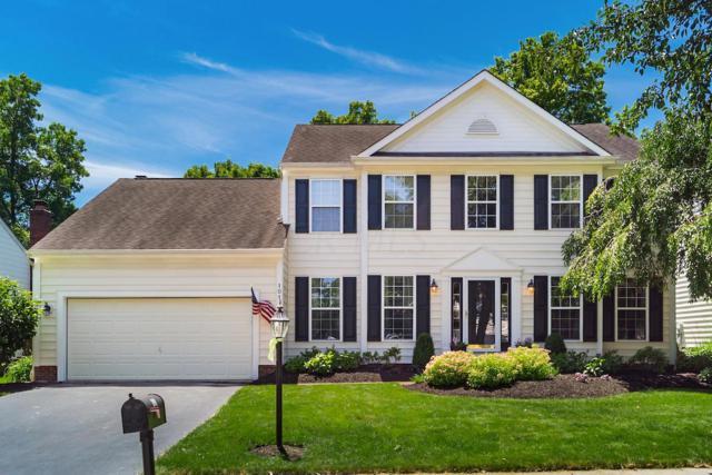 101 Tiller Drive, Powell, OH 43065 (MLS #219020947) :: Signature Real Estate