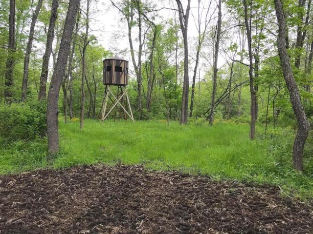 0 Frampton Road, Frazeysburg, OH 43822 (MLS #219021087) :: Berkshire Hathaway HomeServices Crager Tobin Real Estate