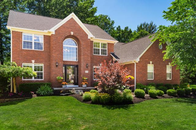 7226 Wallpepper Court, Westerville, OH 43082 (MLS #219021110) :: Signature Real Estate
