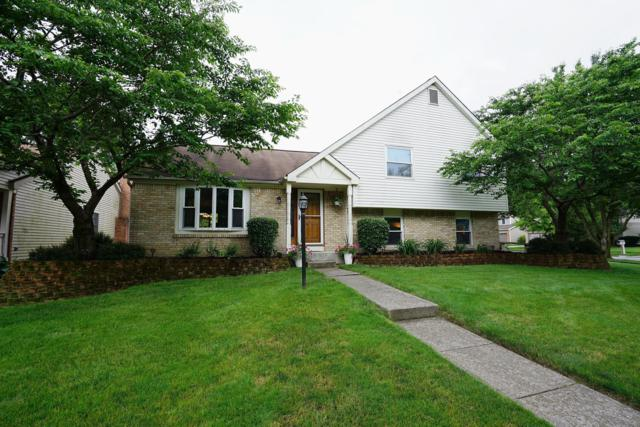 7863 Maplecreek Court, Powell, OH 43065 (MLS #219021247) :: Huston Home Team
