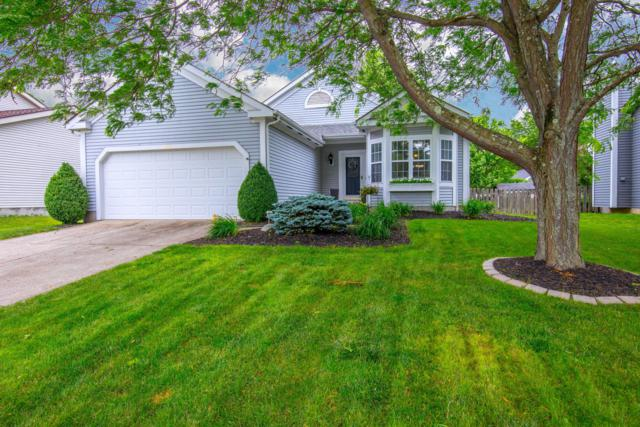 8635 Cadet Drive N, Galloway, OH 43119 (MLS #219021252) :: Signature Real Estate
