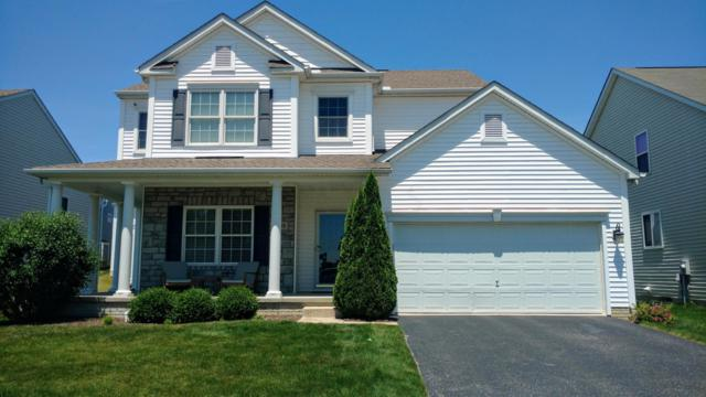 328 Olentangy Meadows Drive, Lewis Center, OH 43035 (MLS #219021293) :: The Clark Group @ ERA Real Solutions Realty