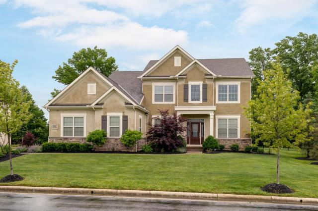 9031 Shaffer Drive, Powell, OH 43065 (MLS #219021305) :: Signature Real Estate