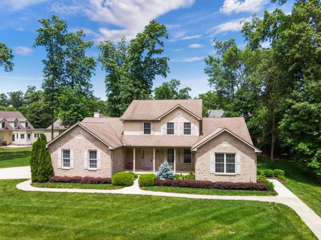 91 Buckeye Drive, Powell, OH 43065 (MLS #219021350) :: Signature Real Estate