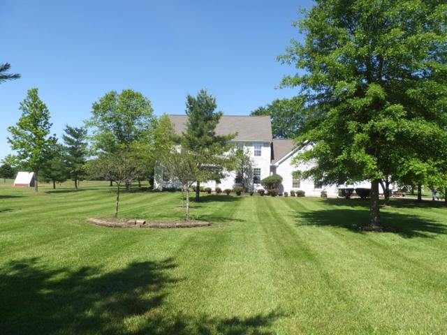 3739 Panhandle Road, Delaware, OH 43015 (MLS #219021364) :: Signature Real Estate