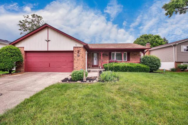1291 Saffron Place, Galloway, OH 43119 (MLS #219021447) :: Huston Home Team