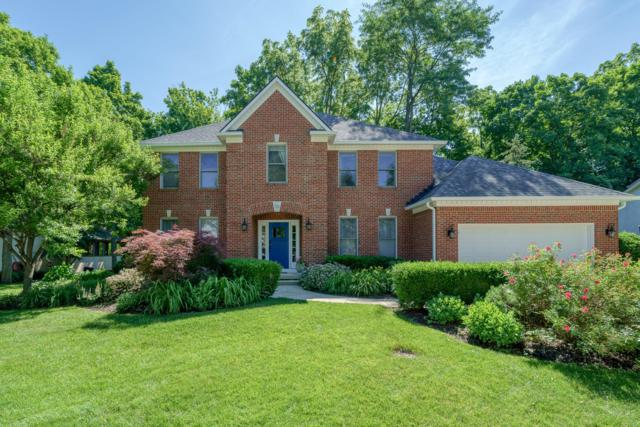7112 Timberview Drive, Dublin, OH 43017 (MLS #219021503) :: Signature Real Estate