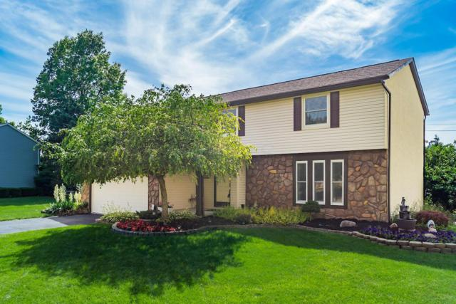 10426 N Crosset Hill Drive, Pickerington, OH 43147 (MLS #219021542) :: Brenner Property Group | Keller Williams Capital Partners