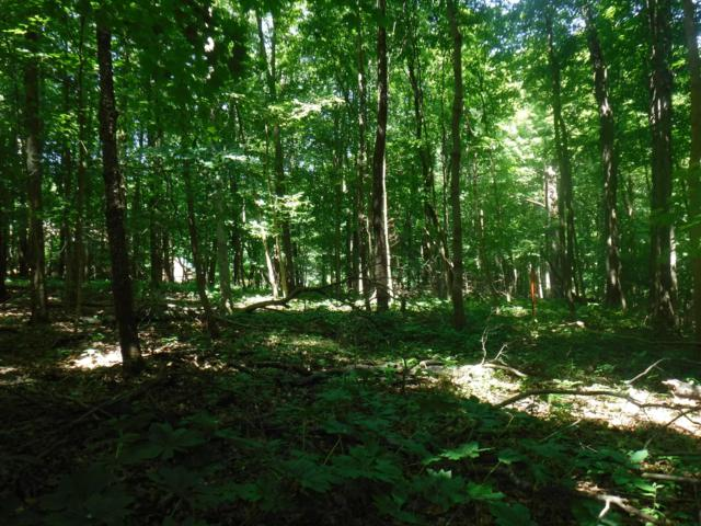0 Hogback Road Tract 1, Sunbury, OH 43074 (MLS #219021543) :: Exp Realty