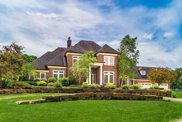 16187 Kreashbaum Road, Rockbridge, OH 43149 (MLS #219021689) :: Brenner Property Group | Keller Williams Capital Partners