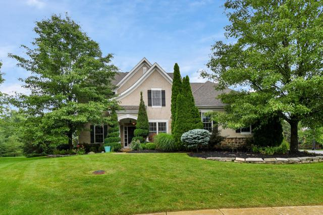 9894 Cape Court, Dublin, OH 43017 (MLS #219021787) :: The Clark Group @ ERA Real Solutions Realty