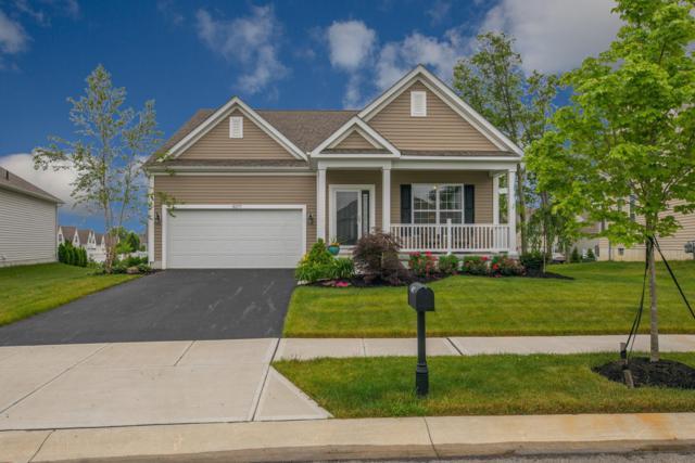 6071 Jadkins Way, Westerville, OH 43081 (MLS #219021946) :: Signature Real Estate