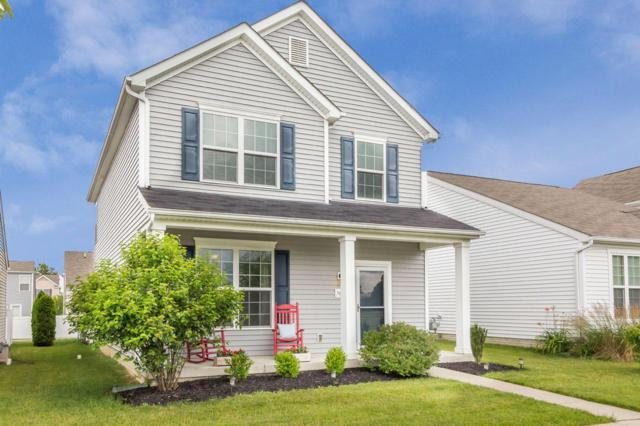 5660 Caledonia Drive, Westerville, OH 43081 (MLS #219021955) :: RE/MAX ONE