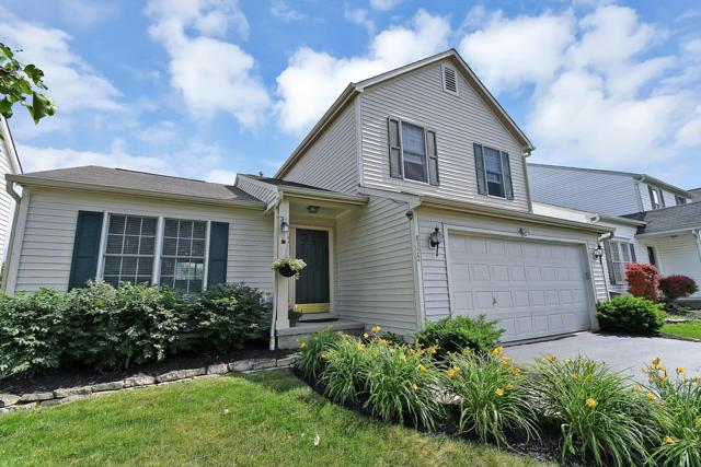 8372 Vega Drive, Blacklick, OH 43004 (MLS #219021971) :: Signature Real Estate