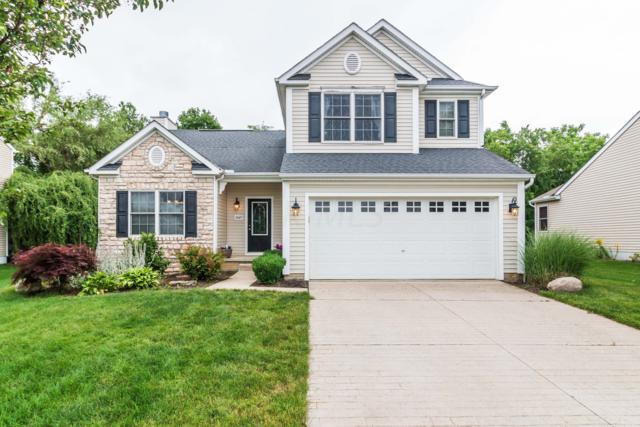 7449 Ida Way, Canal Winchester, OH 43110 (MLS #219021980) :: The Clark Group @ ERA Real Solutions Realty
