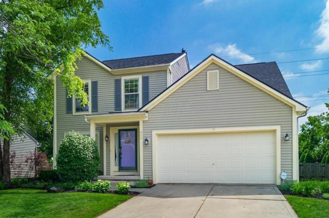 826 Lynnhaven Court, Columbus, OH 43228 (MLS #219022031) :: The Clark Group @ ERA Real Solutions Realty