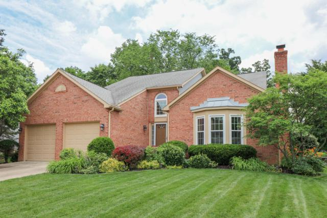442 Whitley Drive, Gahanna, OH 43230 (MLS #219022116) :: Exp Realty