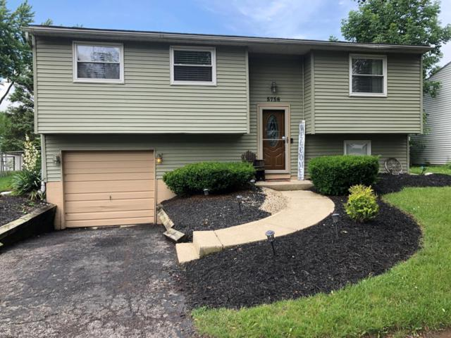 5756 Saffron Avenue, Galloway, OH 43119 (MLS #219022142) :: The Clark Group @ ERA Real Solutions Realty