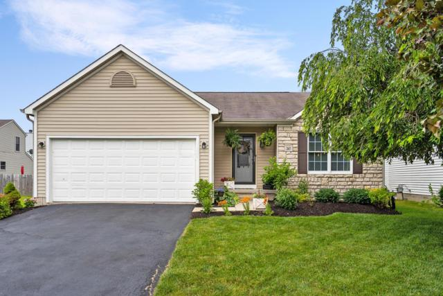 247 Westbear Court, Galloway, OH 43119 (MLS #219022178) :: Huston Home Team
