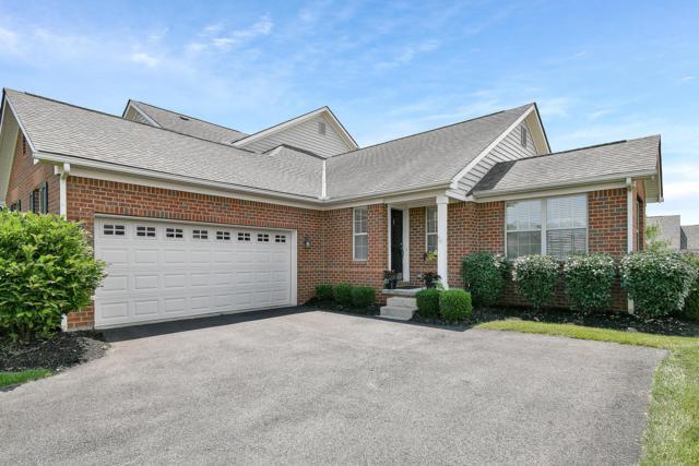 957 Adara Drive, Columbus, OH 43240 (MLS #219022221) :: Brenner Property Group   Keller Williams Capital Partners