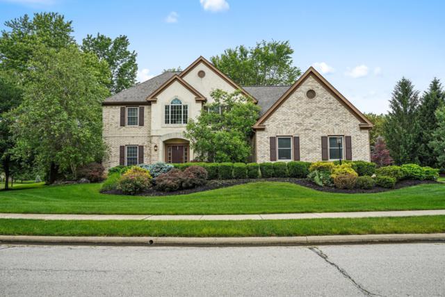 41 Timberknoll Loop, Powell, OH 43065 (MLS #219022242) :: Berkshire Hathaway HomeServices Crager Tobin Real Estate