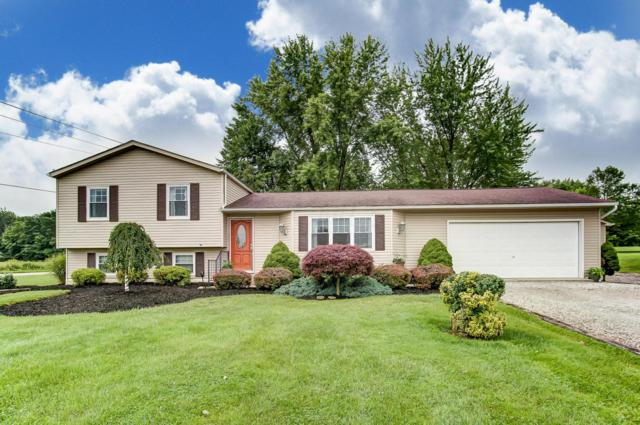 11031 Green Chapel Road NW, Johnstown, OH 43031 (MLS #219022259) :: The Clark Group @ ERA Real Solutions Realty