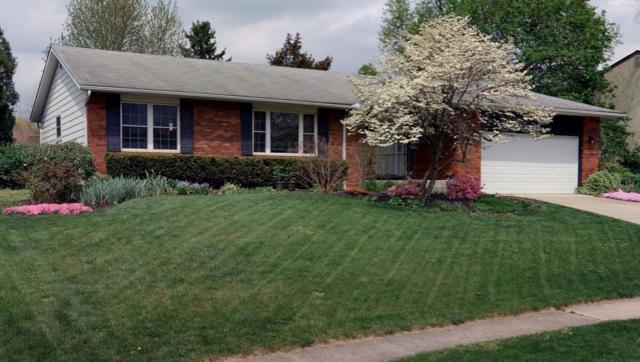 1228 Autumn Hill Drive, Columbus, OH 43235 (MLS #219022271) :: Huston Home Team