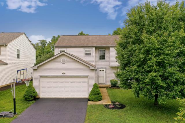 28 Tabilore Loop, Delaware, OH 43015 (MLS #219022295) :: Huston Home Team