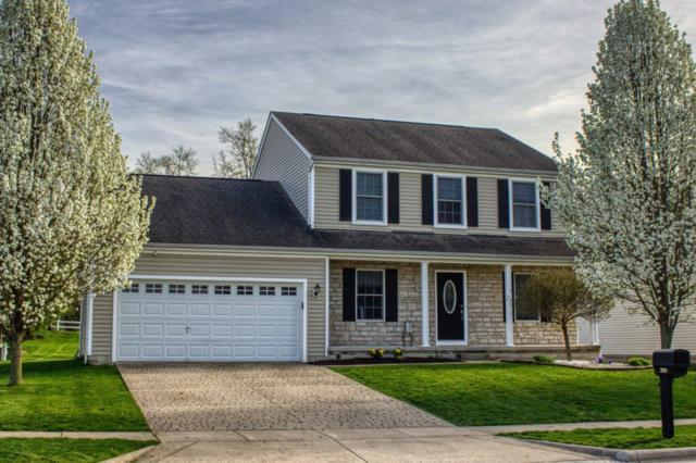 7019 Badger Drive, Canal Winchester, OH 43110 (MLS #219022409) :: The Clark Group @ ERA Real Solutions Realty