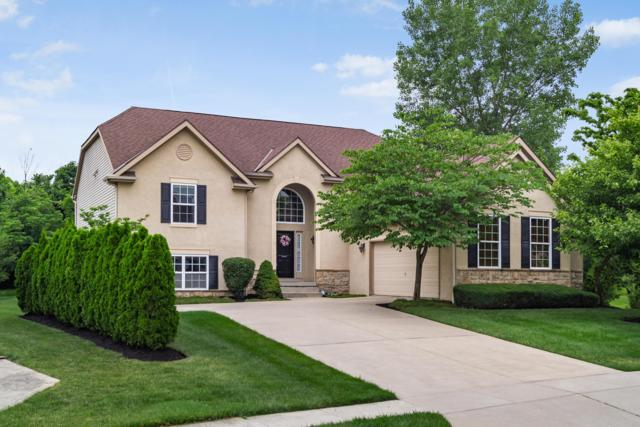 521 Preservation Lane, Columbus, OH 43230 (MLS #219022447) :: RE/MAX ONE