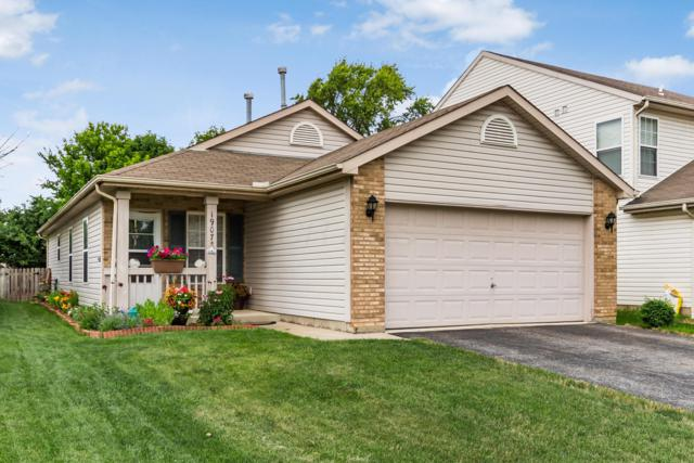 1907 Prominence Drive, Grove City, OH 43123 (MLS #219022488) :: The Clark Group @ ERA Real Solutions Realty