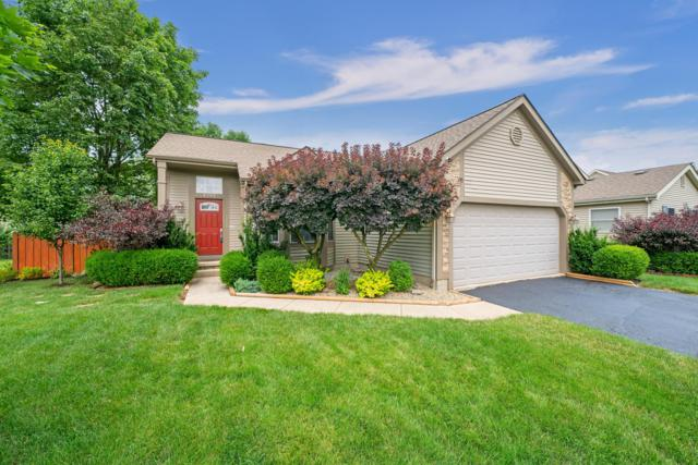 4992 Shady Oak Drive, Hilliard, OH 43026 (MLS #219022497) :: The Clark Group @ ERA Real Solutions Realty