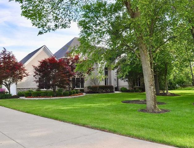 7405 Whirlaway Circle, Powell, OH 43065 (MLS #219022505) :: Exp Realty