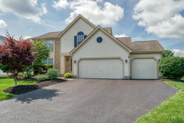1216 Westwood Drive, Lewis Center, OH 43035 (MLS #219022537) :: Brenner Property Group | Keller Williams Capital Partners