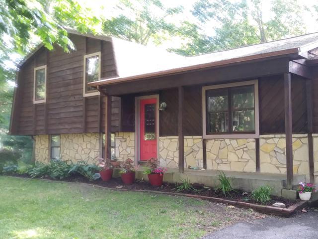 11781 Covington Court, Pickerington, OH 43147 (MLS #219022574) :: The Clark Group @ ERA Real Solutions Realty