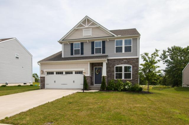 1566 Tammy Louise Drive, Pataskala, OH 43062 (MLS #219022731) :: Brenner Property Group | Keller Williams Capital Partners
