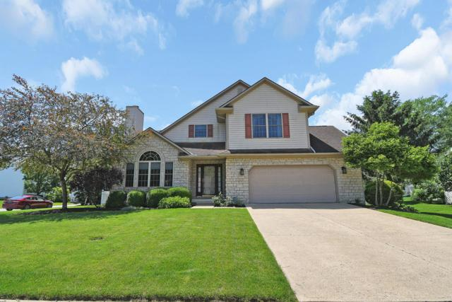 533 Raccoon Lane, Sunbury, OH 43074 (MLS #219022758) :: Exp Realty