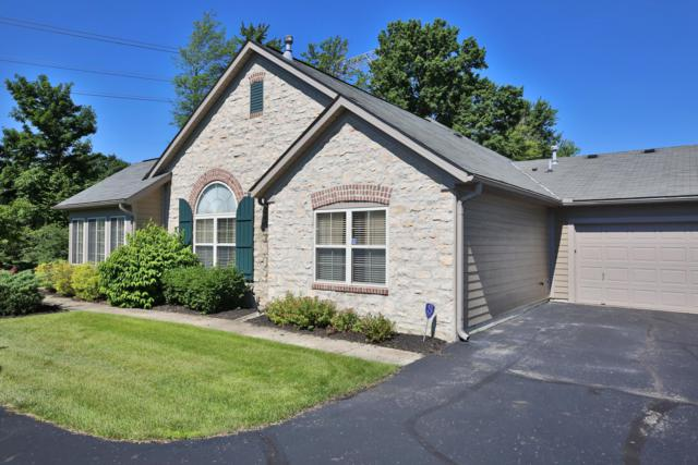 7350 Falls View Circle, Delaware, OH 43015 (MLS #219022793) :: The Clark Group @ ERA Real Solutions Realty