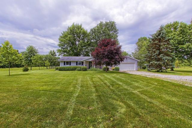 19729 Dog Leg Road, Marysville, OH 43040 (MLS #219022882) :: The Clark Group @ ERA Real Solutions Realty