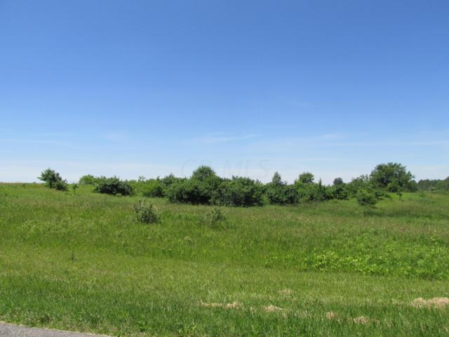 0 Twp Road 198, Bellefontaine, OH 43311 (MLS #219022924) :: RE/MAX ONE
