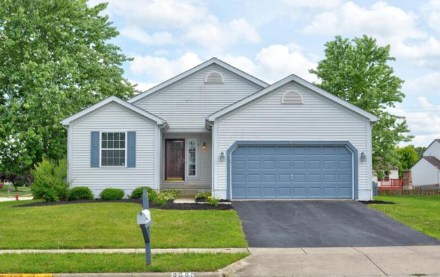 8565 Major Place, Galloway, OH 43119 (MLS #219022935) :: Signature Real Estate