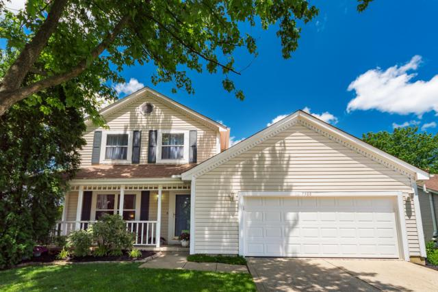 7908 Schoolside Drive, Westerville, OH 43081 (MLS #219023002) :: The Clark Group @ ERA Real Solutions Realty