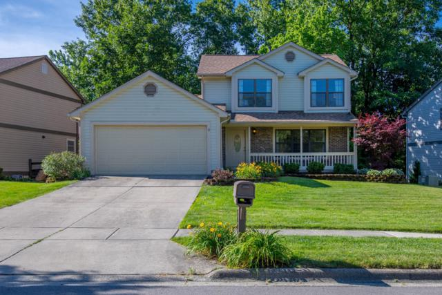 5401 Wolf Run Drive, Columbus, OH 43230 (MLS #219023056) :: The Clark Group @ ERA Real Solutions Realty